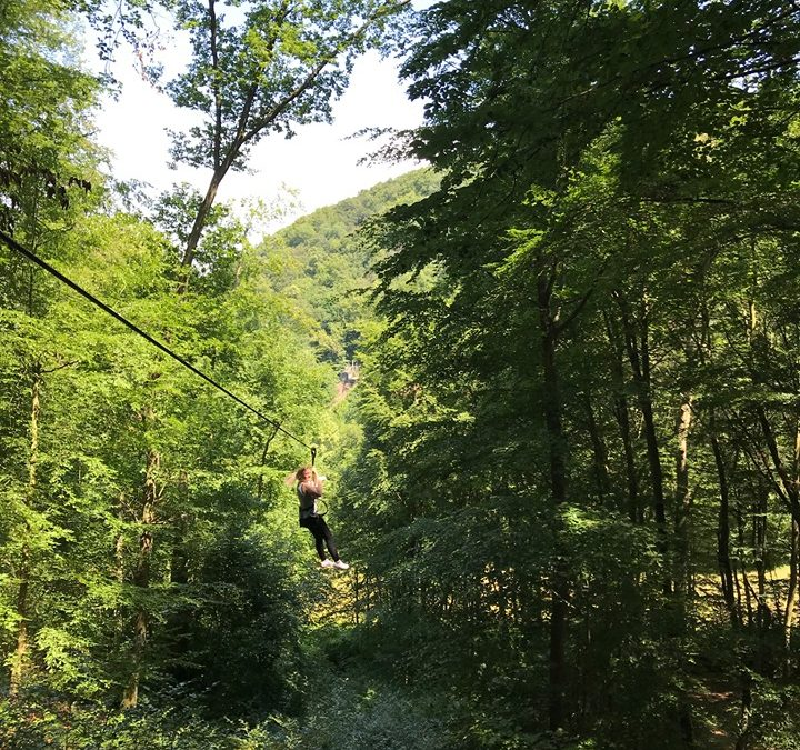 Mentoring2gether: Kletterpark in Ahrweiler